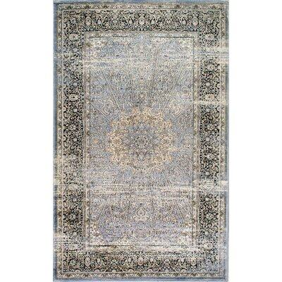 Charleson Light Blue Area Rug Rug Size: 5' x 8'