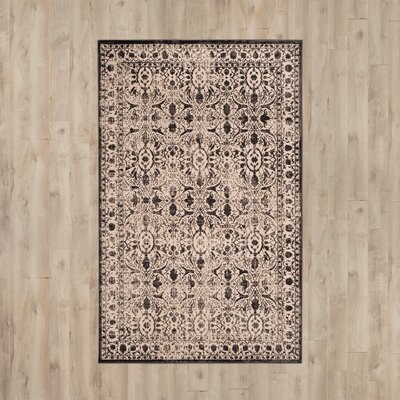Roma Brown / Black Area Rug Rug Size: 51 x 76