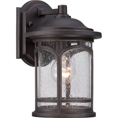 Baylor 1-Light Outdoor Wall Lantern Finish: Palladian Bronze