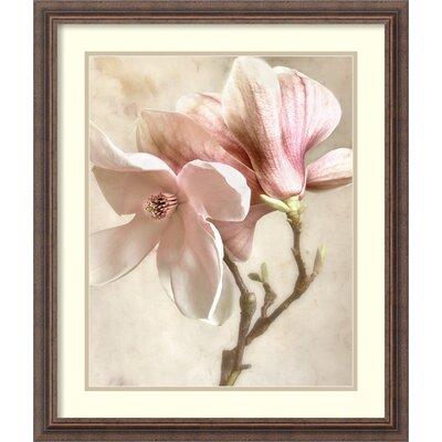Pink Magnolia I Framed Photographic Print