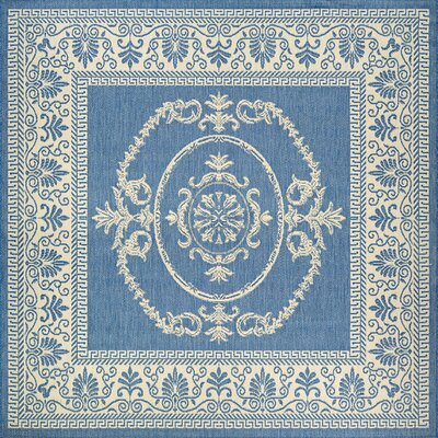 Highbury Blue Indoor/Outdoor Area Rug Rug Size: Square 8'6