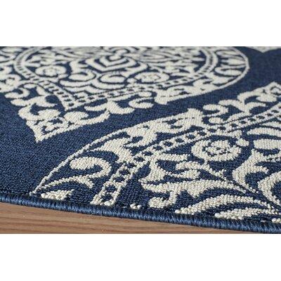 Regency Blue/White Indoor/Outdoor Area Rug