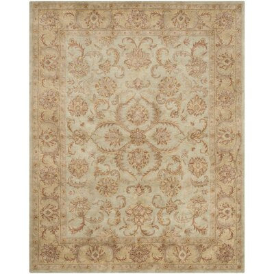 Taylor Hand-Tufted Wool Green/Beige Area Rug Rug Size: Rectangle 9 x 12