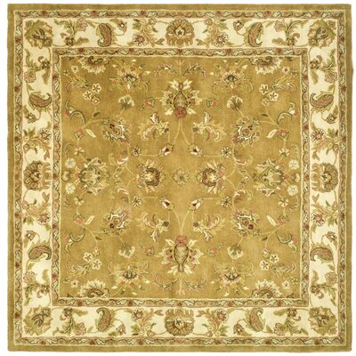 Taylor Green Area Rug Rug Size: Square 6
