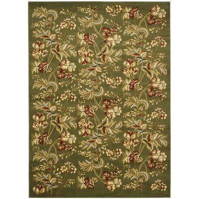 Taufner Sage Green Area Rug Rug Size: Rectangle 53 x 76