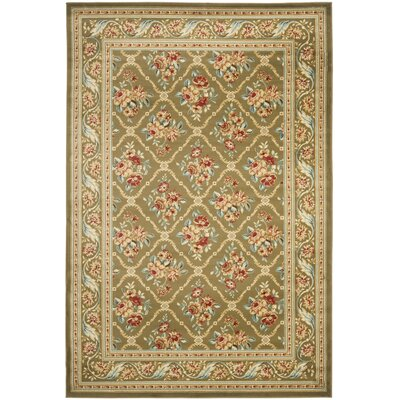 Taufner Green Area Rug Rug Size: Rectangle 4 x 6