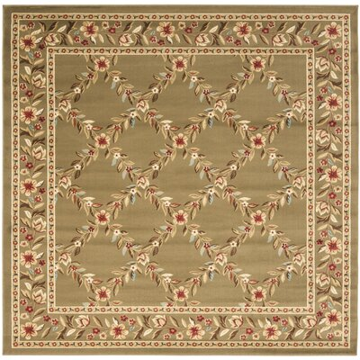 Taufner Green Checked Area Rug Rug Size: Square 67