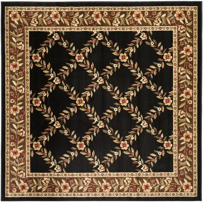 Taufner Black/Brown Area Rug Rug Size: Square 67