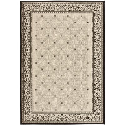 Beasley Ivory/Black Border Outdoor Rug Rug Size: Rectangle 53 x 77