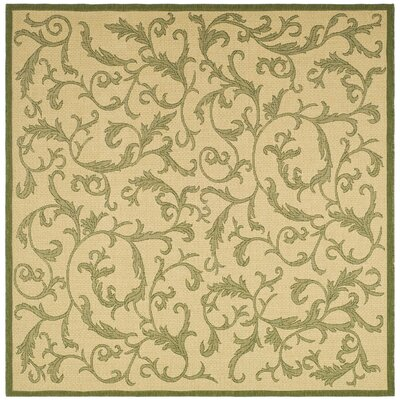 Beasley All Over Ivy Outdoor Rug Rug Size: Square 67