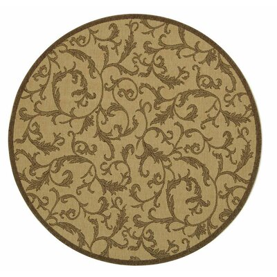 Beasley All Over Ivy Outdoor Rug Rug Size: Round 53
