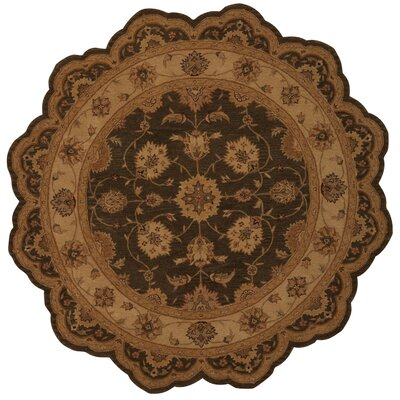 Lundeen Brown Area Rug Rug Size: 12 x 15