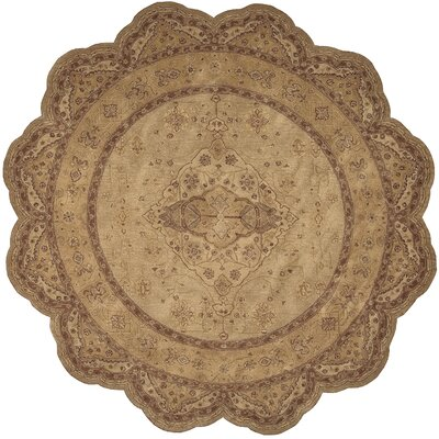 Lundeen Gold Area Rug Rug Size: 56 x 86