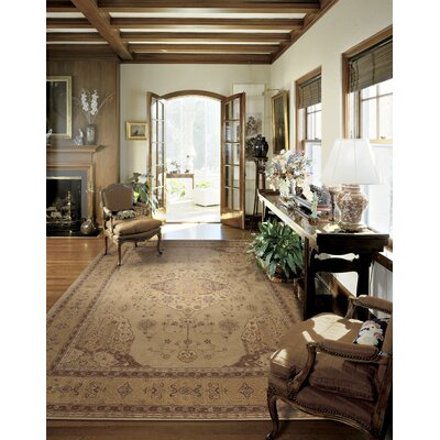 Lundeen Gold Area Rug Rug Size: Rectangle 56 x 86