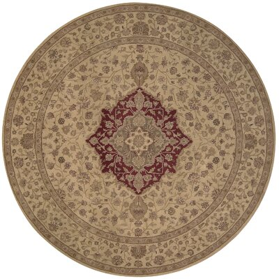 Portchester Lacquer Area Rug Rug Size: 1'5