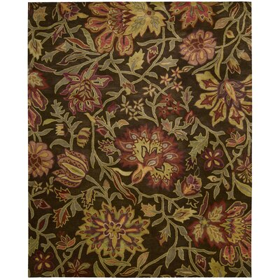 Robin Chocolate Rug Rug Size: Runner 2'4