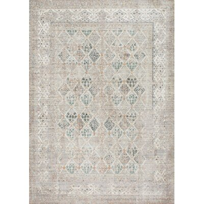 Cole Gray Area Rug Rug Size: Rectangle 53 x 77