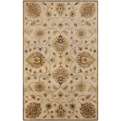 Ponce Hand-Tufted Khaki Area Rug Rug size: Rectangle 5 x 8