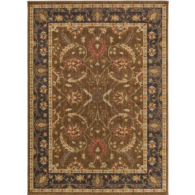 Russo Brown/Neutral Area Rug Rug Size: Rectangle 53 x 73