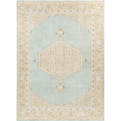Palko Hand-Knotted Blue/Beige Area Rug Rug Size: Rectangle 8 x 11