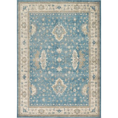 Kerensa�Light Blue Area Rug Rug Size: 7 x 10