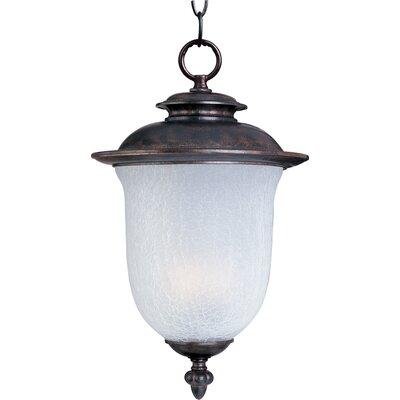 Hayden Outdoor Hanging Lantern