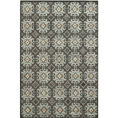 Martha Stewart Area Rug Rug Size: Rectangle 8 x 10