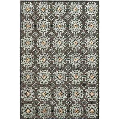 Martha Stewart Area Rug Rug Size: Rectangle 51 x 76
