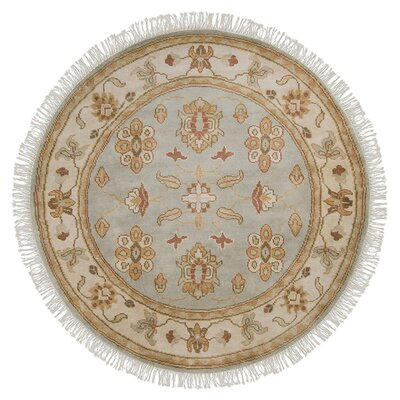 Marystone Pale Jade Rug Rug Size: Rectangle 8 x 11