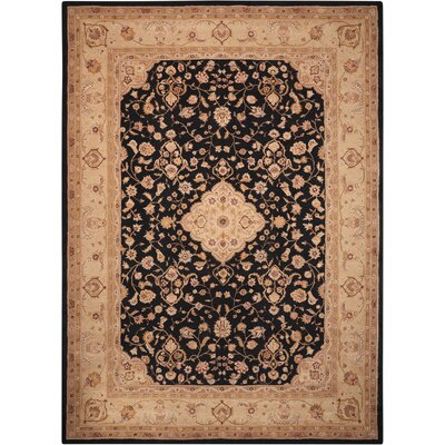 Lundeen Black Area Rug Rug Size: 15 x 23