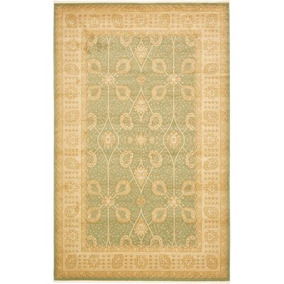 Dorthey Light Green Area Rug Rug Size: 106 x 165