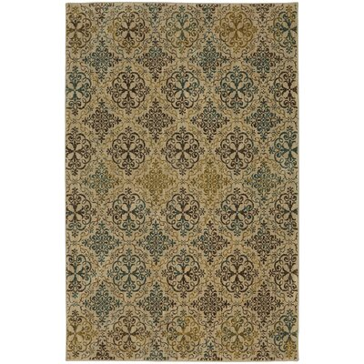 Millard Brown Area Rug Rug Size: 8 x 11