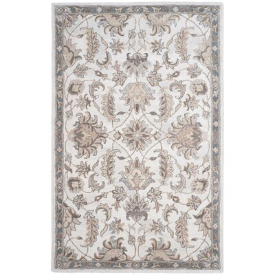 Davila Hand-Tufted Brown/Ivory Area Rug Rug Size: Rectangle 4 x 6