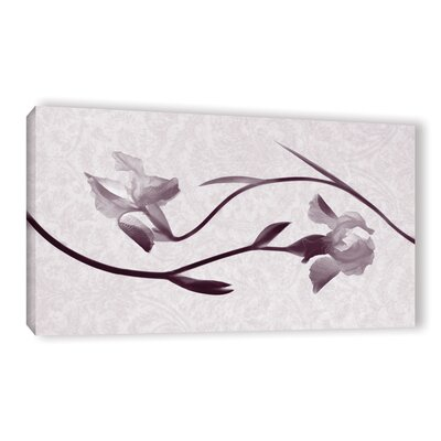 Iris Melody 2 Graphic Art on Wrapped Canvas