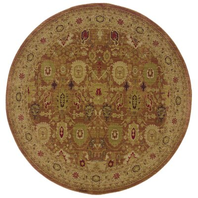 Barrows Rust/Gold Area Rug Rug Size: Round 78