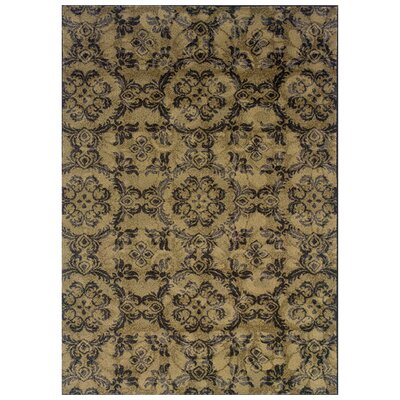 Tarquin Woven Gray/Black Area Rug Rug Size: Rectangle 6'7