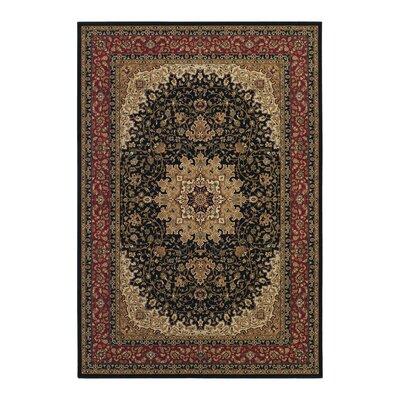 Blundell Royal Kashan Black/Brown Area Rug