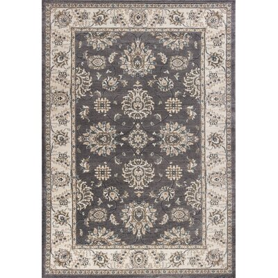 Arnot Gray/Ivory Area Rug Rug Size: Rectangle 53 x 77