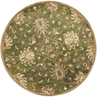 Gonsalves Green Agra Rug Rug Size: Rectangle 33 x 53