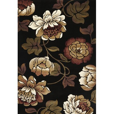 Eve Black Bella Rug Rug Size: 53 x 77