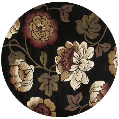 Eve Black Bella Rug Rug Size: Rectangle 18 x 27