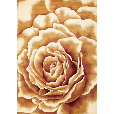 Eve Floral Splendor Area Rug Rug Size: Rectangle 53 x 77