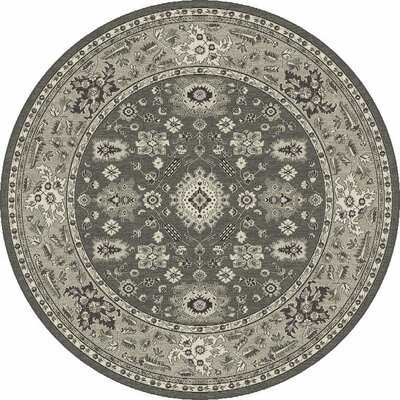 Appleridge Charcoal/Gray Agra Area Rug Rug Size: Rectangle 53 x 77