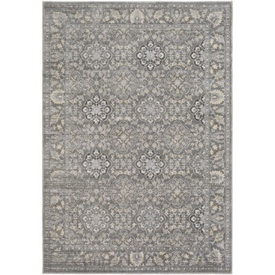 Villegas Medium Gray/Cream Area Rug Rug Size: 2' x 3'