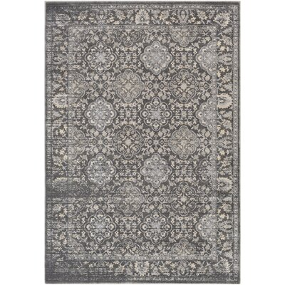 Villegas Medium Gray/Taupe Area Rug Rug Size: 2 x 3