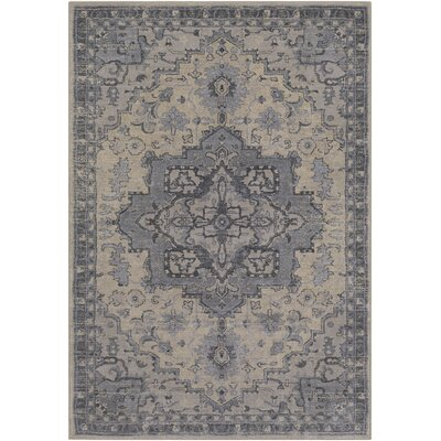 Villegas Light Gray/Cream Area Rug Rug Size: Rectangle 5 x 76