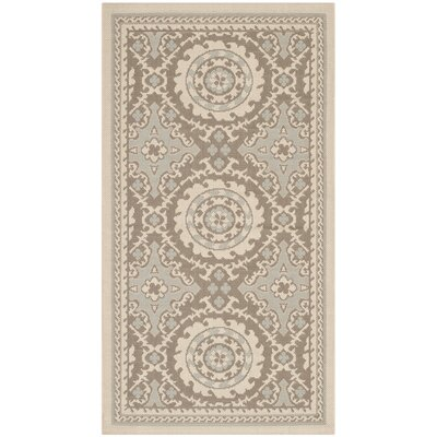 Beasley Outdoor Area Rug Rug Size: Rectangle 27 x 5