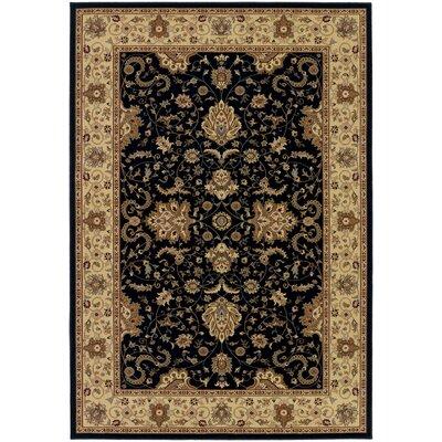 Belcourt Floral Black Area Rug Rug Size: 53 x 76