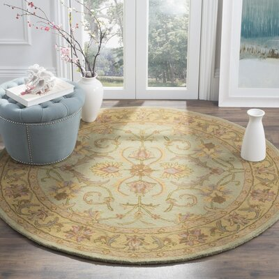 Taylor Green & Gold Area Rug Rug Size: Oval 46 x 66