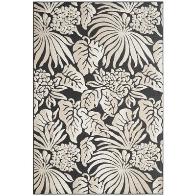 Patricia Black Indoor/Outdoor Area Rug Rug Size: 67 x 96